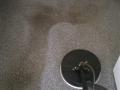 Tile cleaning Hobart (5)