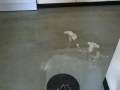 Tile cleaning Hobart (6)